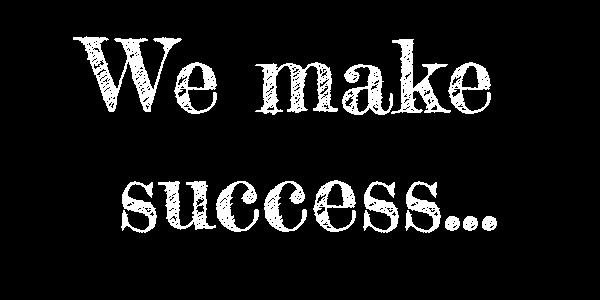 Success Ecommerce