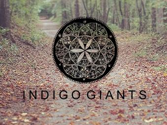 Indigo Giants